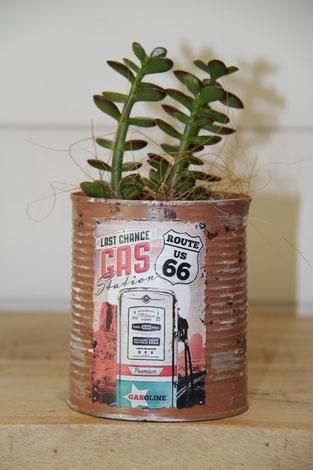 gas station route 66 dose büchse sukkelente pflanze
