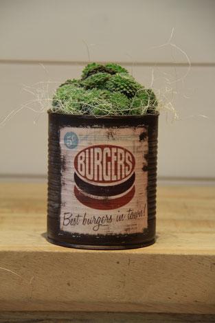 burges best dose büchse sukkelente pflanze