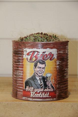 dose büchse bier hilft gegen akute realtät sukkelente