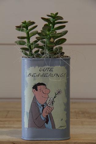 gute besserung blume dose büchse sukkelente pflanze