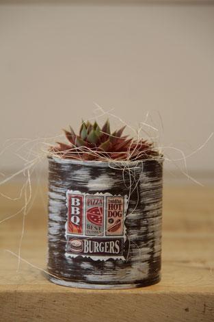 bbp hot dose büchse sukkelente pflanze