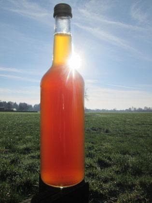 Wie die Bienen - so das Bier! Metflasche vor ostfriesischer Weite hinter unserem Haus.