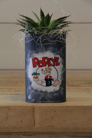 popeye spinat dose büchse sukkelente pflanze
