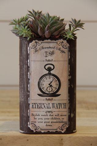 eternal watch uhr vintage dose büchse sukkelente pflanze