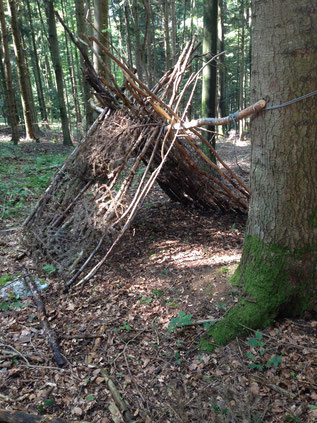 Asthütte im Wald, Foto Kyra Stolp