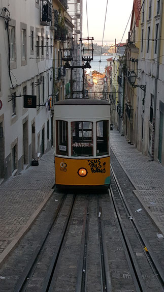 Bild: Lissabon Straßenbahn