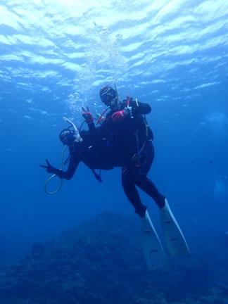 石垣島でのんびりダイビング「仲良しバディー」ヒートハートクラブ