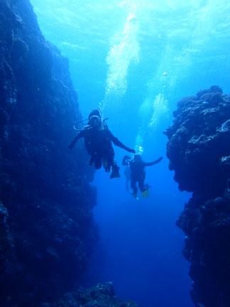 石垣島でのんびりダイビング「70代ダイバー」ヒートハートクラブ