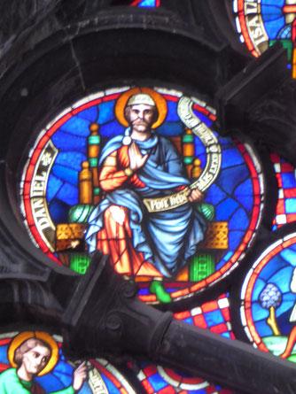 Notre-Dame de Tournai Rosace - Profeet DANIEL