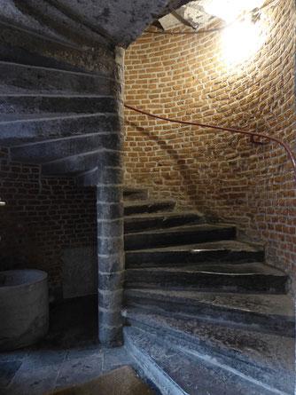 Doornik - Musée d'Archeologie