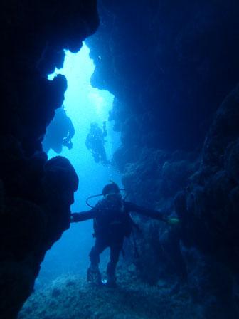 石垣島でのんびりダイビング「ケーブダイブ」ヒートハートクラブ