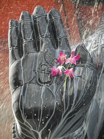 Segnende Hand, Hanuman, Bangalore - Carmen Weder, Art of Moment, All 1 Yoga