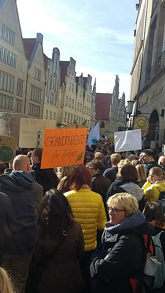 Fridays for Future Münster Klimaschutz Krajewski