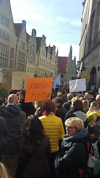 Fridays for Future Münster Klimaschutz Krajewski