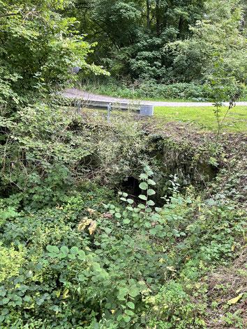Dieses Rohr unter einer Überführung des Holzbaches sollte bei Starkregen nicht verstopft sein, da es dann zur Überflutung des gesamten Bereiches kommen kann.