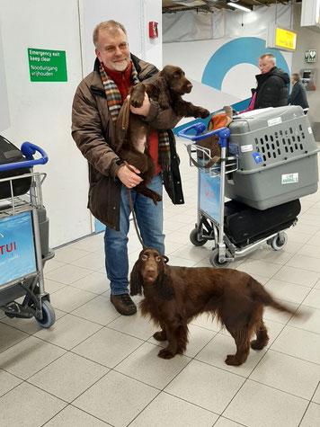 Schipol Airport Amsterdam, Fotos: Ulf F. Baumann