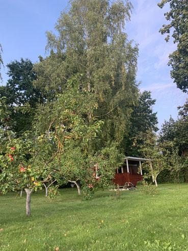 Mittagspause im Klostergarten während der Apfelernte