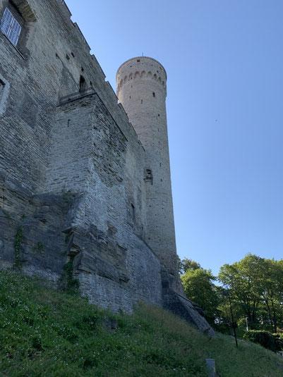 Estland, Tallinn, Reval, Altstadt, Langer Hermann, Turm