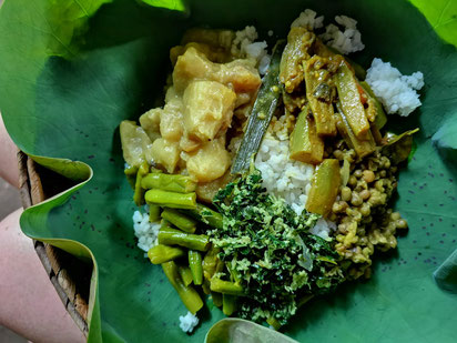 Plant-Based Food in the Village of Habarana