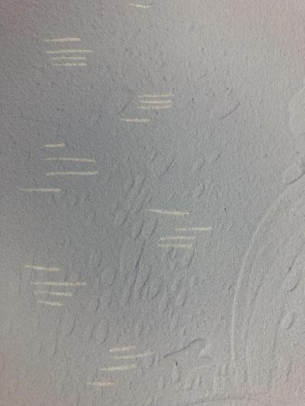 オーガニックウォール DIY 塗り壁材 DIY塗り壁材 猫の爪あと メンテナンス