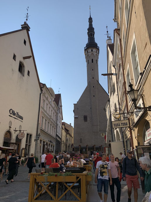 Estland, Tallinn, Reval, Altstadt, Denkmal, Rathaus, Gotik