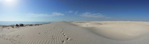 In den Sugar Dunes gibt es weißen Sand soweit das Auge reicht