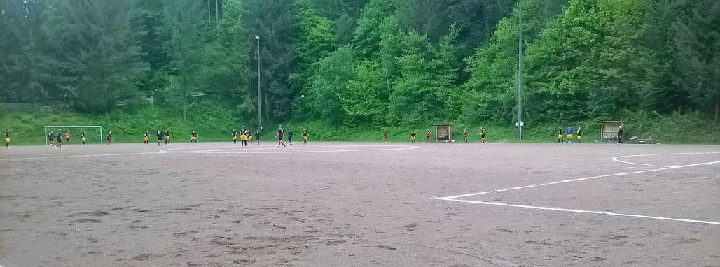 Waldstadion Trier