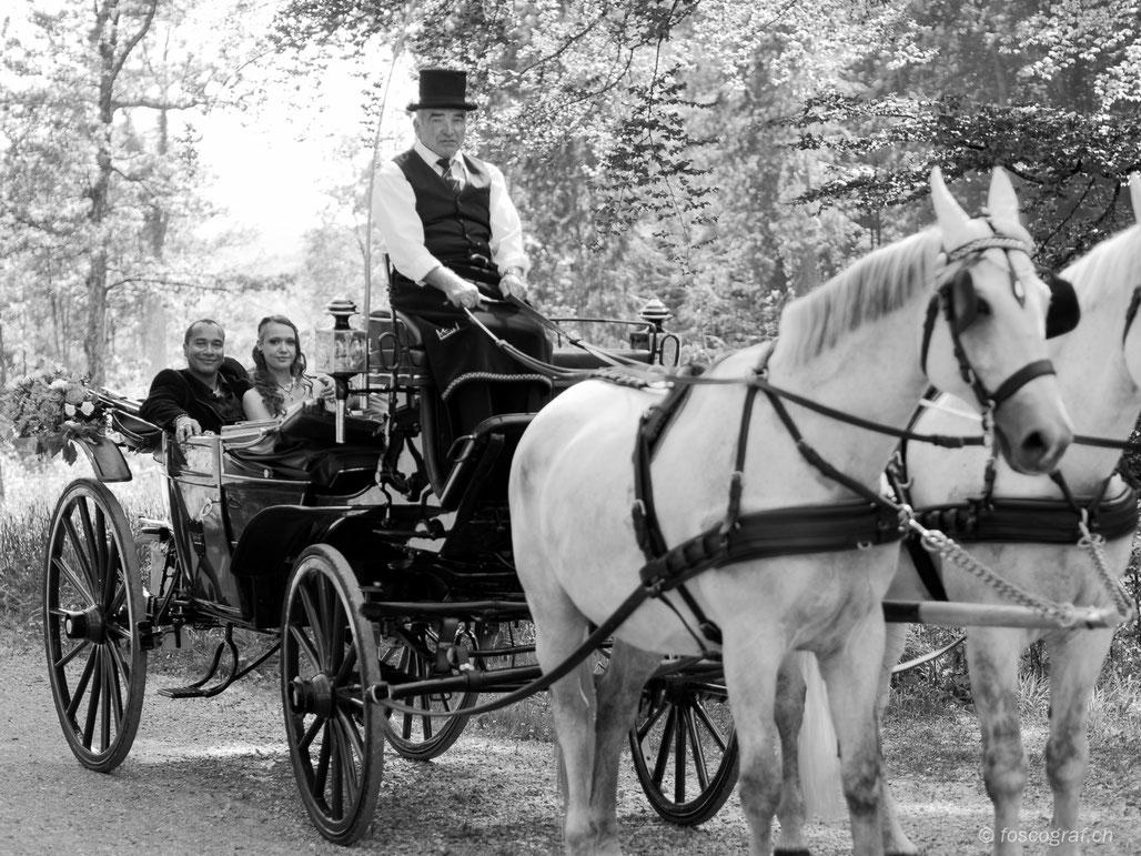 Hochzeitskutsche von Christian Wüthrich fotografiert von Daniel Fosco Fotografie
