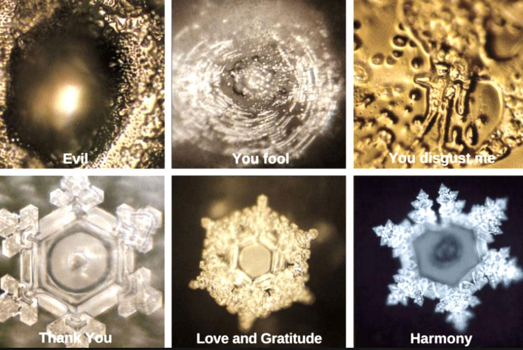 Bildquelle: Buch, Wasserkristalle, Masaru Emoto