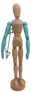 Arm- und Schulterbereich