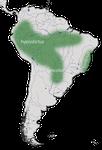 Karte zur Verbreitung des Drosselzaunkönigs in Südamerikas