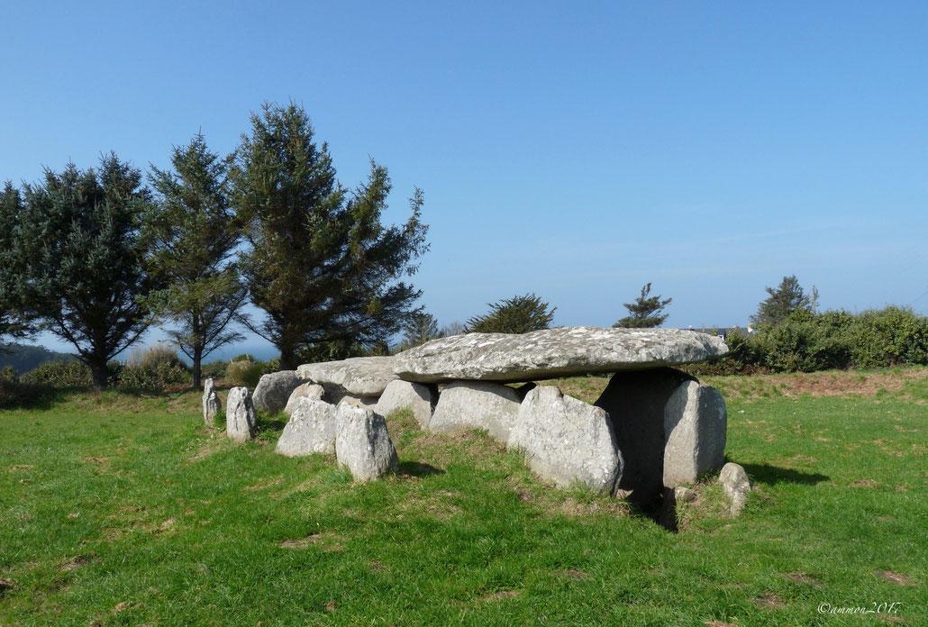Allée couverte de l'Ile Grande (22)  Plus familier que l'allée couverte, nous connaissons mieux le Dolmen,qui est un tombeau édifier à l'aide de grosses pierres ou mégalithes.  Tandis que le Dolmen apparaît au début du néolithique,l'allée couverte apparaî