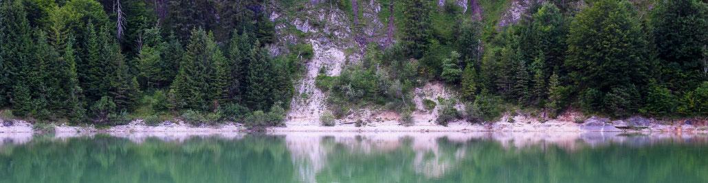 Wasser See Fluss fließend Natur Outdoor Naturfotographie sylvenstein Wasserspiegelung Bäume Nadelbäume Felsen Ufer
