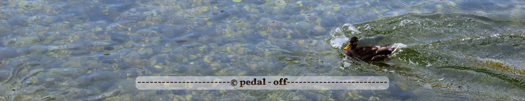 Wasser See Fluss fließend Natur Outdoor Naturfotographie m