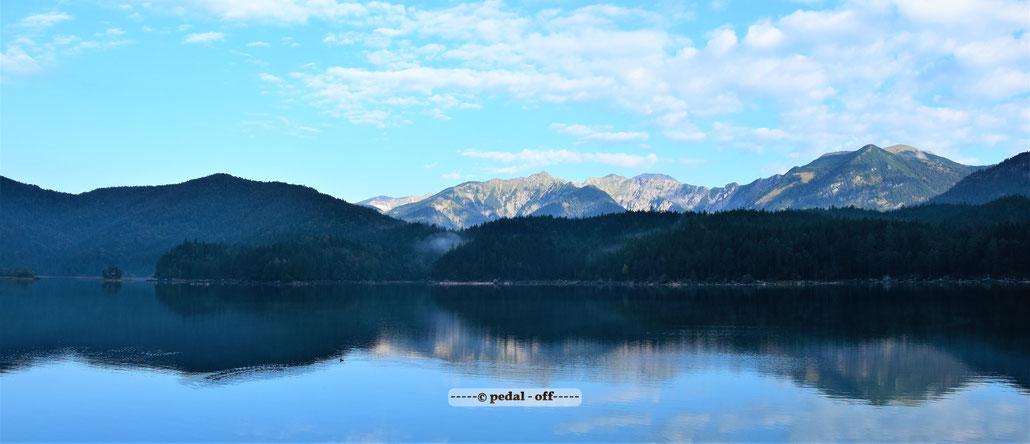 Wasser See Fluss fließend Natur Outdoor Naturfotographie isar münchen ente erpel schwimmen