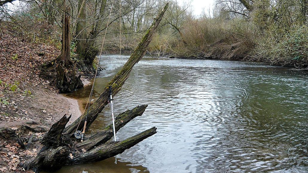 Der hessische Fliegenfischer mit Skistock unterwegs ...