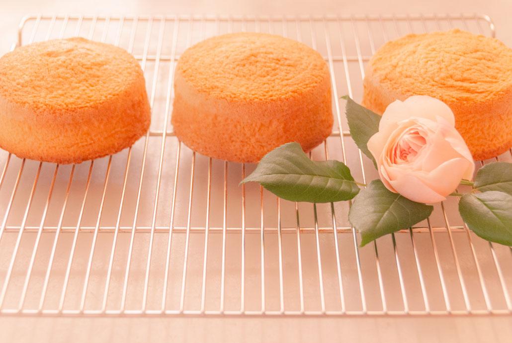 Sponge cakes, φ3.5inches x 3 , Fleur*Fleur*