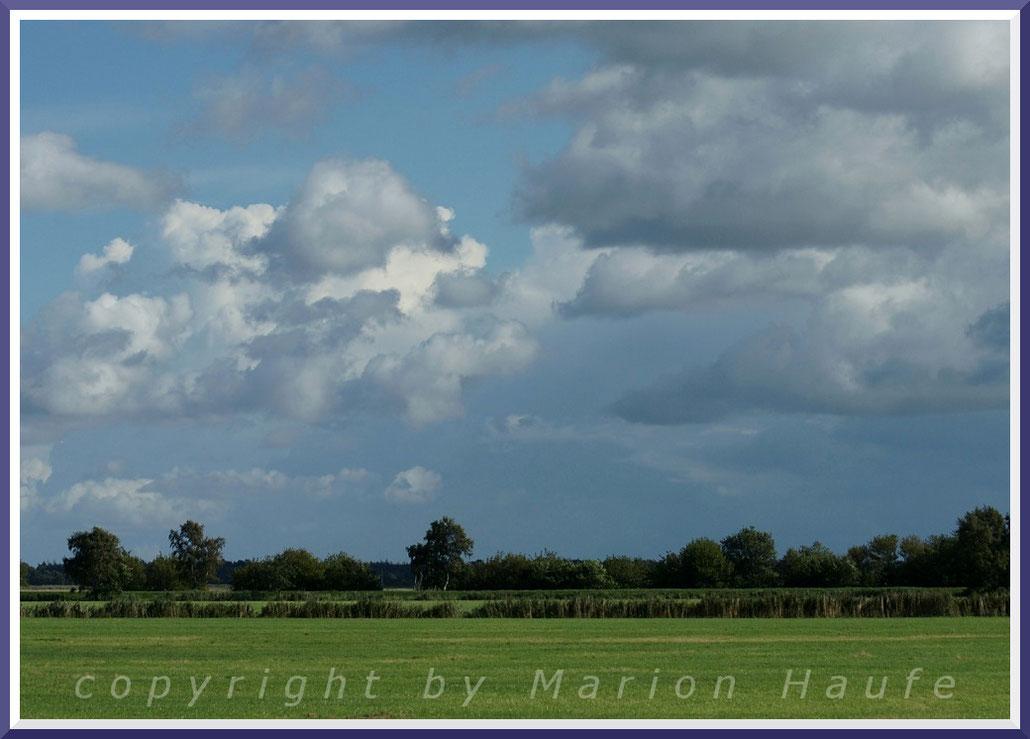 Landschaft zwischen Prerow und Wieck - flaches Land und jede Menge Himmel.