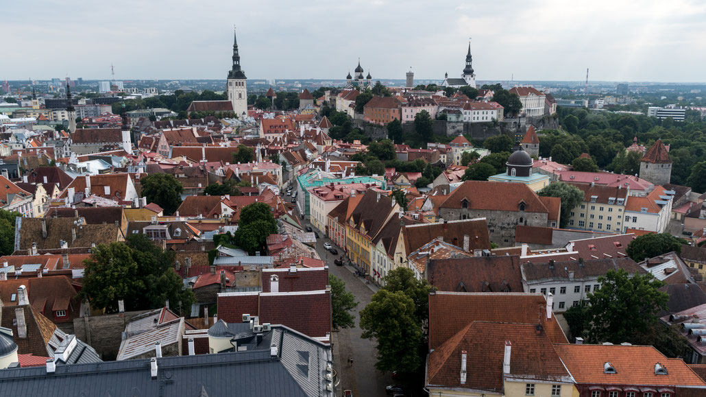 Stunning views from atop St. Olaf's church
