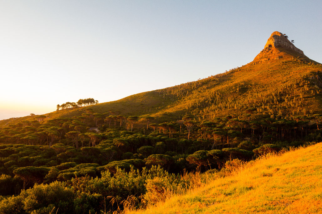 Lion's Head in Capetown, South Africa, during sunset