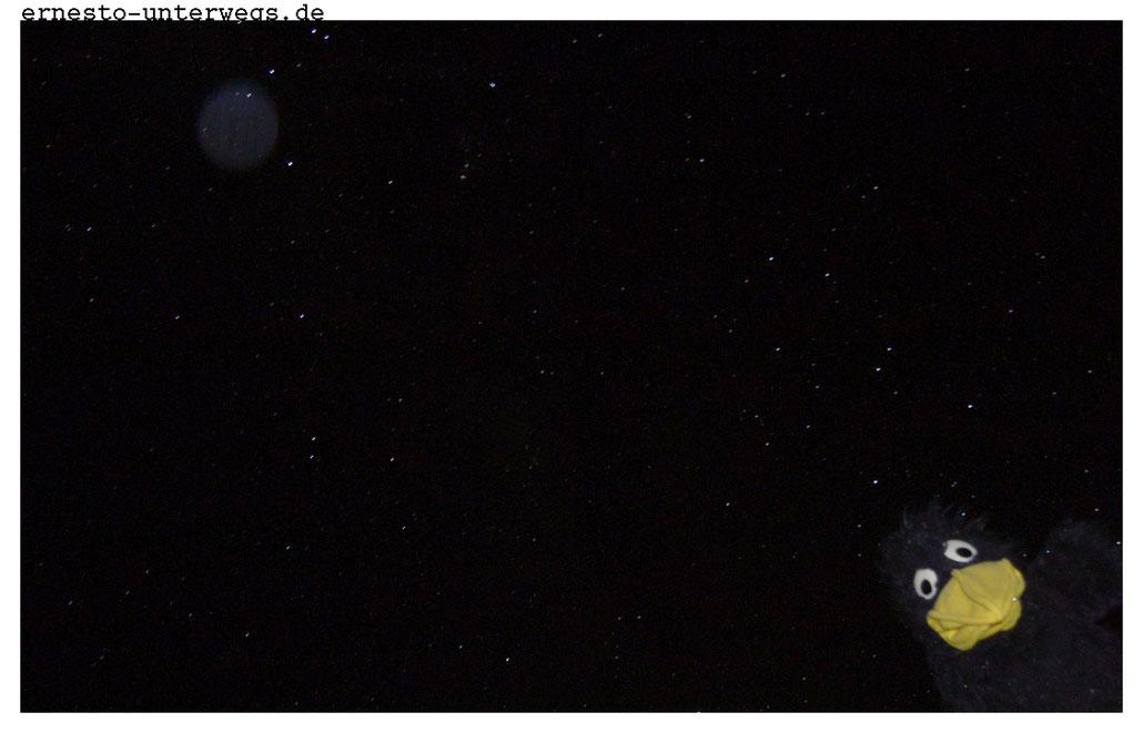 Ich sehe nicht nur die Milchstraße, sondern auch deutlich ihre Verzweigung.