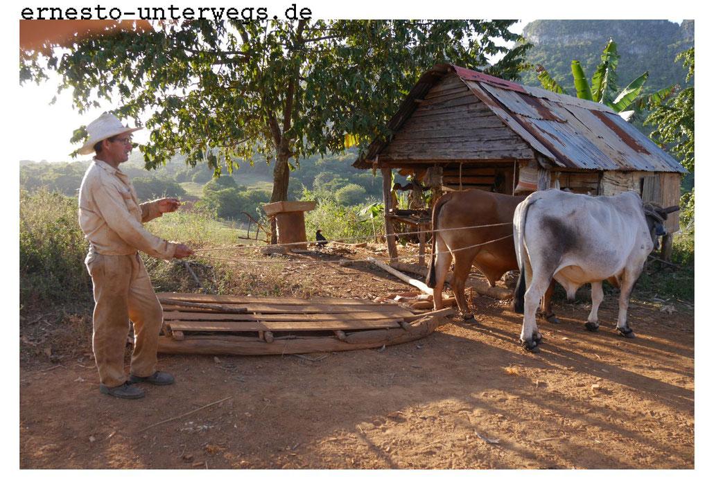Dieser Schlitten dient dem Transport von Lasten und dem Bauern.
