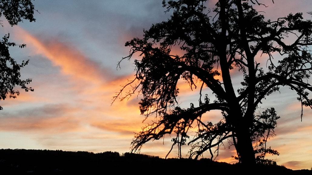 Freitagabendrot über dem Himmel in Dietikon, danach gabs allerdings nur noch Grau und Regen.
