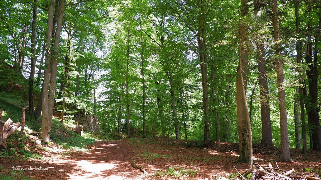Burgruine Federaun, Warmbad Villach