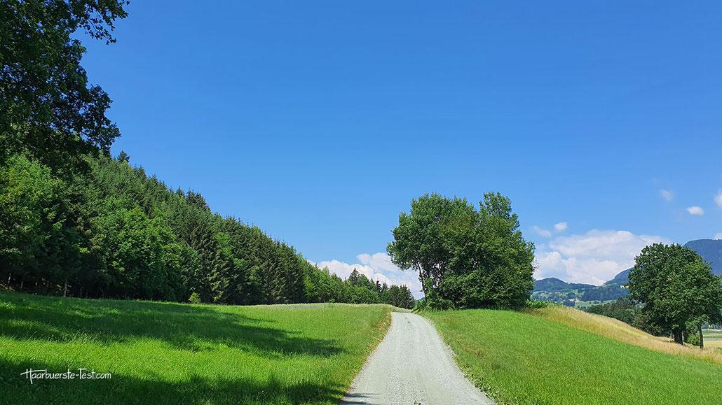 malerischer weg, idyllische landschaft, grüne wiesen