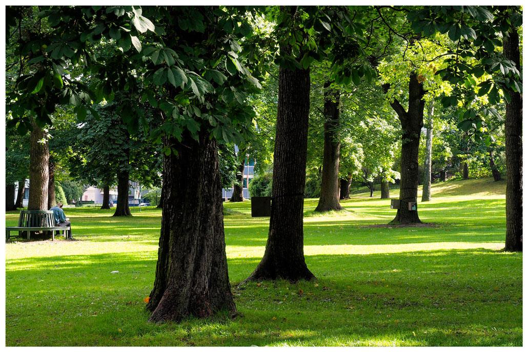 Slottsparken Oslo