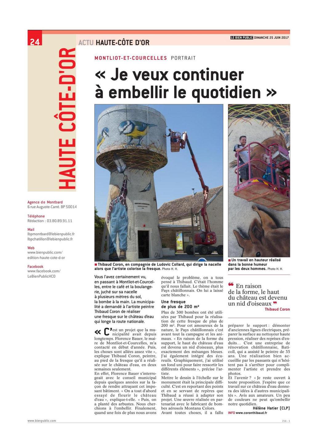 fresque-château-d'eau-coron-côte-d'or-montliot-le-bien-public