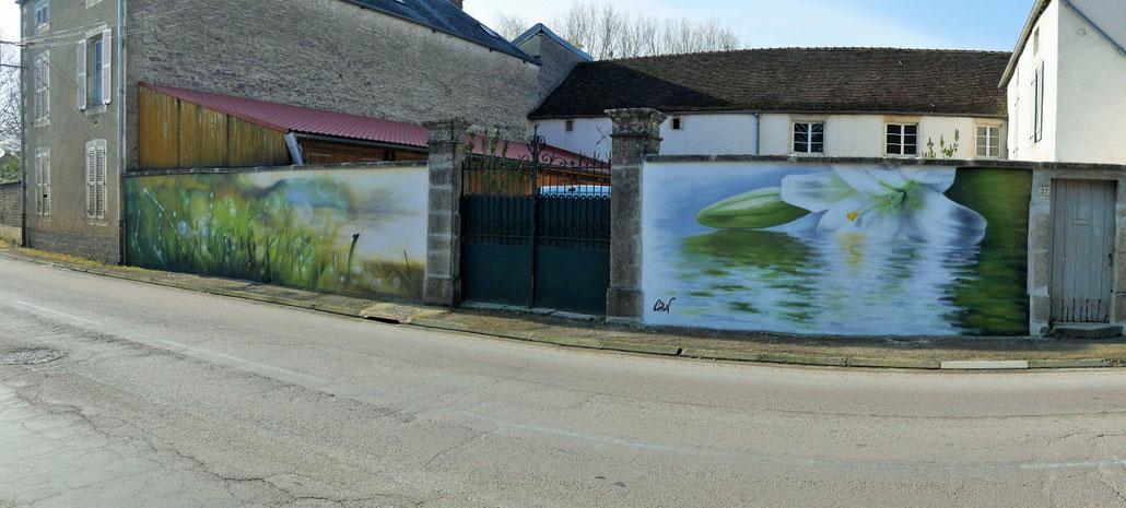 fresque-murale-fleur-eau-rivière-coron