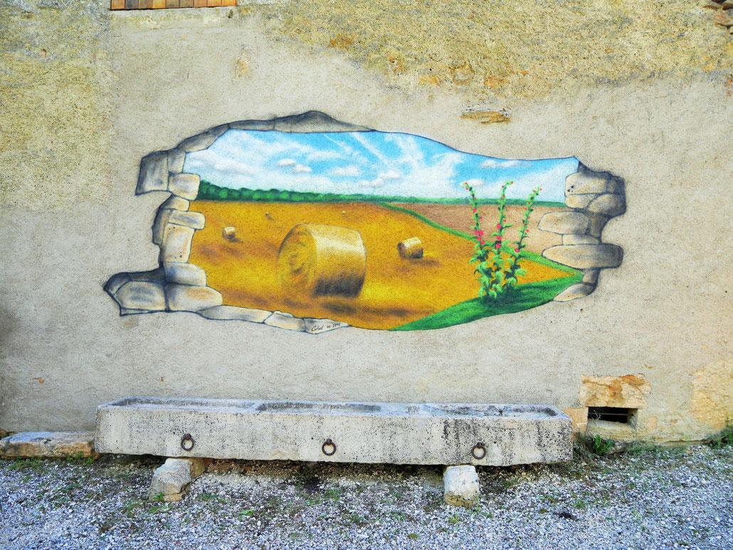trompe-l'oeil-coron-paysage-campagne