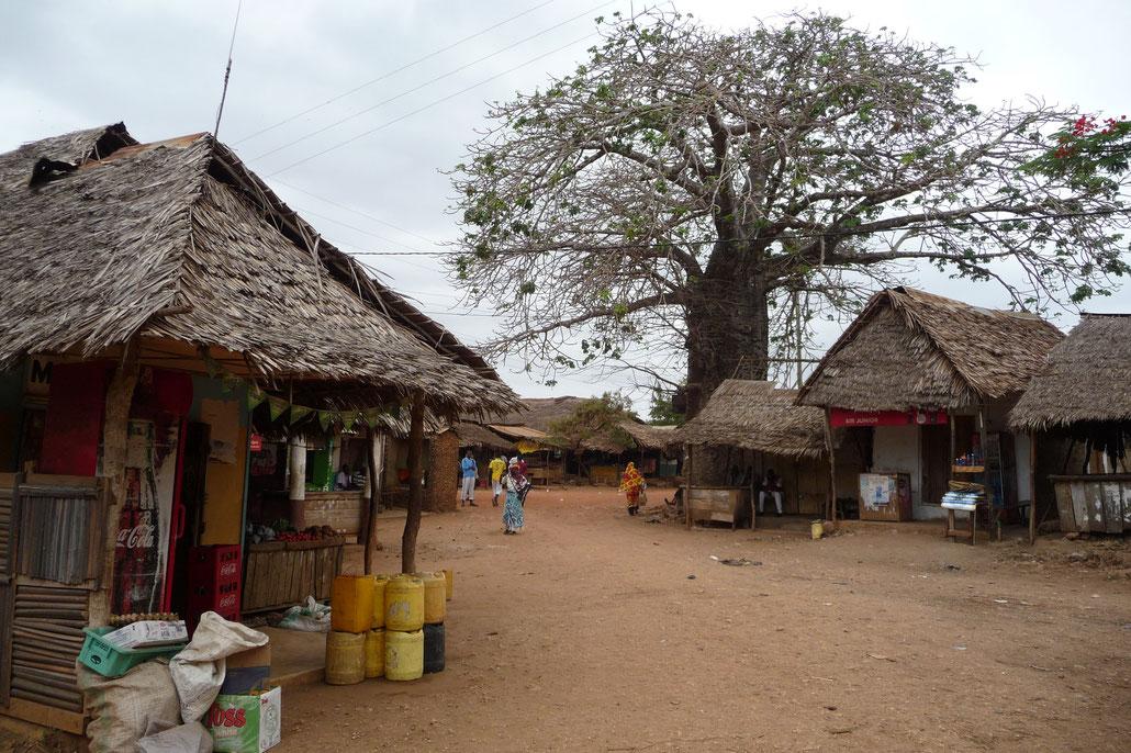 Das Dorf Shimoni: In der Dorfmitte ragt ein großer Affenbrotbaum, auch Baobab genannt empor.
